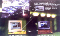 Video Motion Detection System
